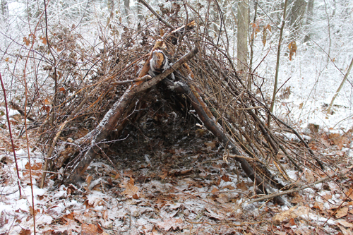 how to build a small hut out of sticks